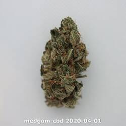 medgom-cbd 2020-04-01