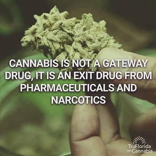 Cannabis is een medicijn !