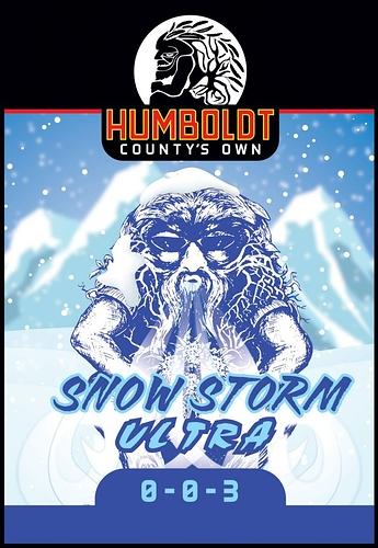 SnowStorm-Quart-707x1024