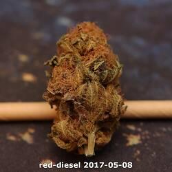red-diesel 2017-05-08