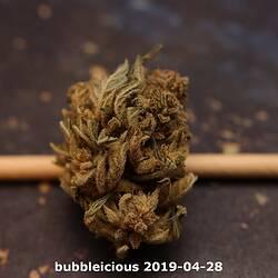 bubbleicious 2019-04-28