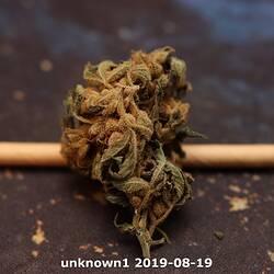 unknown1 2019-08-19