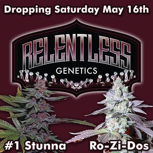 relentless-promo