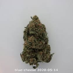 blue-cheese 2020-05-14