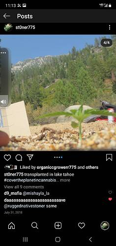 Screenshot_20210205-111337_Instagram