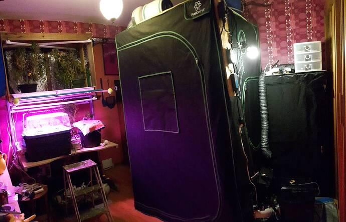 RDWC_Room