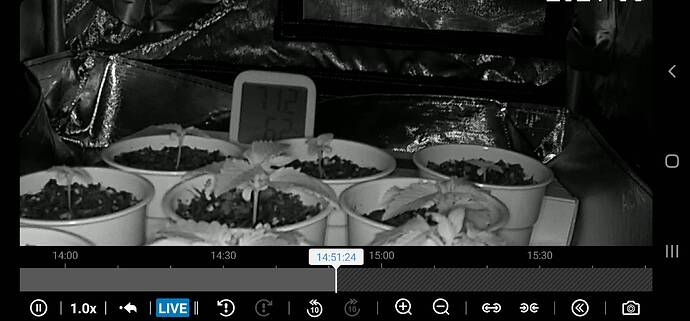 Screenshot_20210824-145125_DS cam