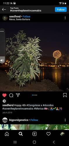Screenshot_20210205-112212_Instagram