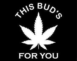 this bud